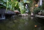 Scottsdale Luxury Home Water Features